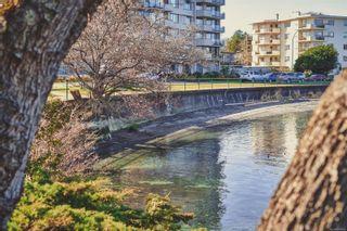 Photo 20: 305 1920 Oak Bay Ave in Victoria: Vi Jubilee Condo for sale : MLS®# 887908