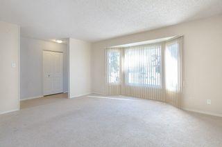 Photo 11: 3452 39 Street in Edmonton: Zone 29 House for sale : MLS®# E4231480