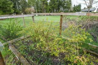 Photo 53: 4943 Cliffe Rd in : CV Courtenay North House for sale (Comox Valley)  : MLS®# 874487