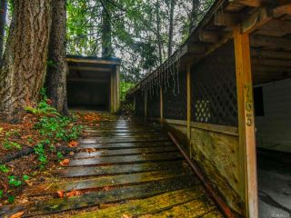 Photo 8: 763 Willowcrest Rd in CAMPBELL RIVER: CR Campbell River Central House for sale (Campbell River)  : MLS®# 831278