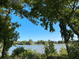 Photo 44: 179 Diane Drive in Winnipeg: Lister Rapids Residential for sale (R15)  : MLS®# 202107645