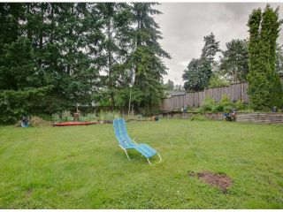 Photo 18: 32395 PTARMIGAN Drive in Mission: Mission BC House for sale : MLS®# F1315198