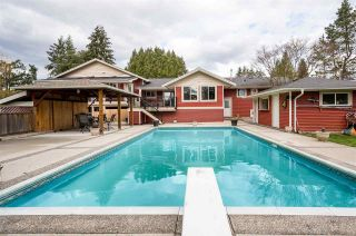 """Photo 33: 4537 SADDLEHORN Crescent in Langley: Salmon River House for sale in """"Salmon River"""" : MLS®# R2553970"""