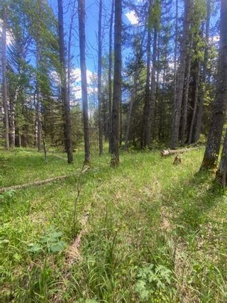 Photo 9: 5.78 Acres Parkins Road: Rural Foothills County Land for sale : MLS®# A1086953