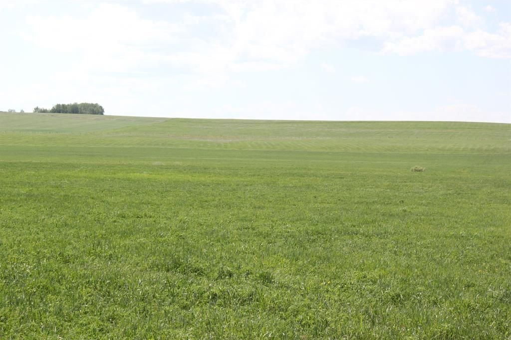 Main Photo: ON Range Road 12 in Rural Rocky View County: Rural Rocky View MD Commercial Land for sale : MLS®# A1116953