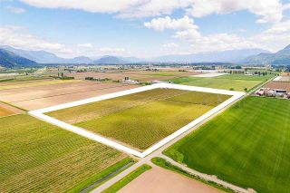Photo 3: 4081 DIXON Road: Agri-Business for sale in Abbotsford: MLS®# C8038207