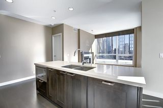 Photo 6: 817 222 Riverfront Avenue SW in Calgary: Eau Claire Apartment for sale : MLS®# A1101898