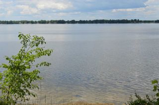 Photo 14: 97 Campbell Beach Road in Kawartha Lakes: Rural Carden House (Bungalow) for sale : MLS®# X4859140