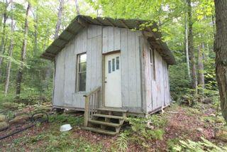 Photo 12: Lt 30 Gelert Road in Minden Hills: House (Bungalow) for sale : MLS®# X4982694