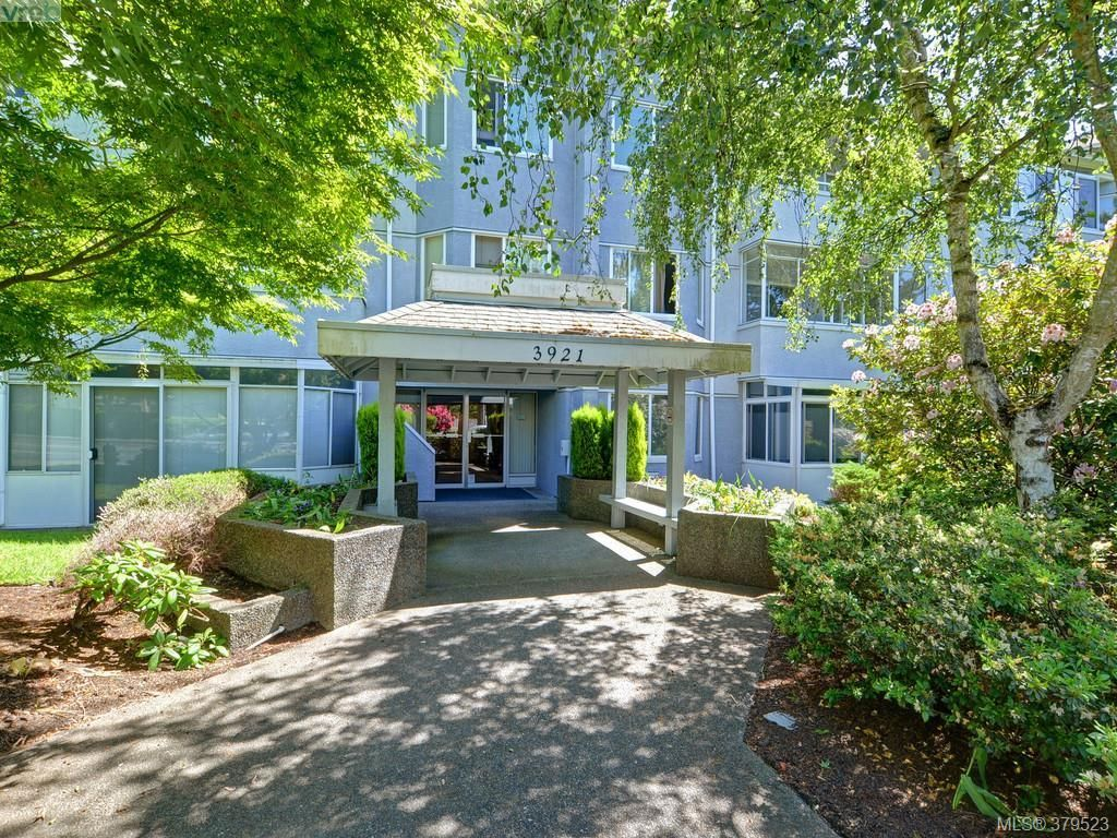 Main Photo: 103 3921 Shelbourne St in VICTORIA: SE Mt Tolmie Condo for sale (Saanich East)  : MLS®# 762268