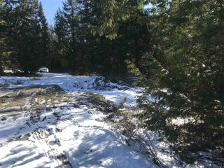 """Photo 8: 12105 270 Street in Maple Ridge: East Central Land for sale in """"ROTHSAY ESTATES"""" : MLS®# R2242844"""