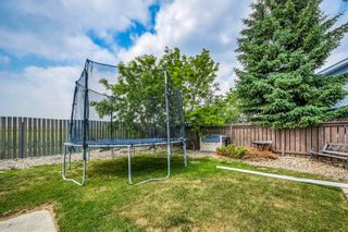 Photo 31: 16 Westwood Drive: Didsbury Detached for sale : MLS®# A1130968