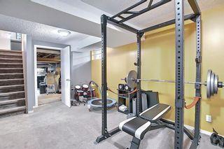 Photo 33: 132 Ventura Way NE in Calgary: Vista Heights Detached for sale : MLS®# A1081083