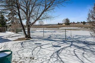 Photo 35: 3 Downey Green: Okotoks Detached for sale : MLS®# A1088351