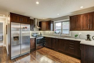 Photo 14: 4203 Dalhart Road NW in Calgary: Dalhousie Detached for sale : MLS®# A1143052