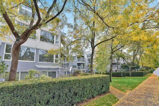 "Photo 33: 305 2010 W 8TH Avenue in Vancouver: Kitsilano Condo for sale in ""Augustine Gardens"" (Vancouver West)  : MLS®# R2622573"