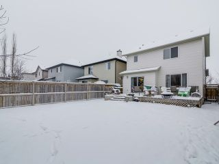 Photo 22: 168 CRANWELL Crescent SE in Calgary: Cranston House for sale : MLS®# C4001809