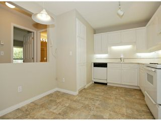 """Photo 28: 205 5556 201A Street in Langley: Langley City Condo for sale in """"Michaud Gardens"""" : MLS®# F1321121"""