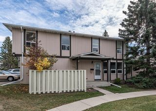 Main Photo: 1502 544 Blackthorn Road NE in Calgary: Thorncliffe Row/Townhouse for sale : MLS®# A1151057
