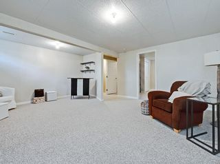 Photo 23: 741 Citadel Drive NW in Calgary: Citadel Detached for sale : MLS®# C4260865