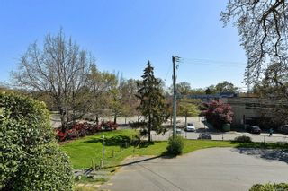 Photo 30: 3301 Argyle Pl in : SE Camosun House for sale (Saanich East)  : MLS®# 873581