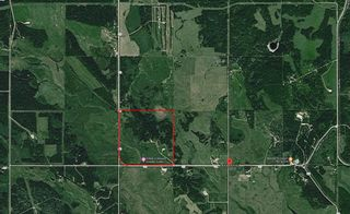 Photo 41: 7350 584 Highway: Rural Mountain View County Agri-Business for sale : MLS®# A1100517