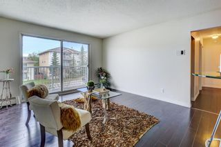 Main Photo: 8 4328 75 Street NW in Calgary: Bowness Apartment for sale : MLS®# A1153308