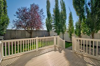 Photo 29: 168 Stonegate Close NW: Airdrie Detached for sale : MLS®# A1137488