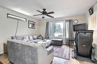 Photo 4: 34 Falconridge Close NE in Calgary: Falconridge Semi Detached for sale : MLS®# A1126419