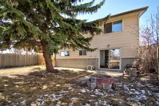 Photo 8: 14 Radcliffe Crescent SE in Calgary: Albert Park/Radisson Heights Detached for sale : MLS®# A1085056
