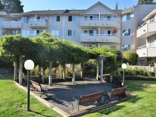 Photo 1: 102 450 BROMLEY Street in Coquitlam: Coquitlam East Condo for sale : MLS®# V982968