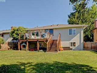 Photo 23: 1941 Carnarvon St in VICTORIA: SE Camosun House for sale (Saanich East)  : MLS®# 792937