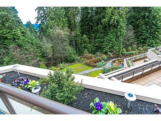 Photo 16: # 506 1500 OSTLER CT in North Vancouver: Indian River Condo for sale : MLS®# V1103932