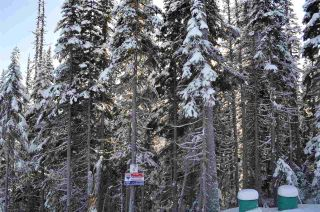 """Photo 4: 210 ALPINE Way in Smithers: Smithers - Rural Land for sale in """"Hudson Bay Mountain Estates"""" (Smithers And Area (Zone 54))  : MLS®# R2453895"""