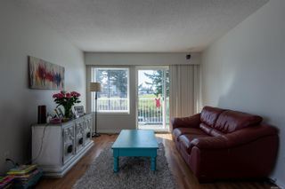 Photo 6: 303 501 9th Ave in : CR Campbell River Central Condo for sale (Campbell River)  : MLS®# 871685