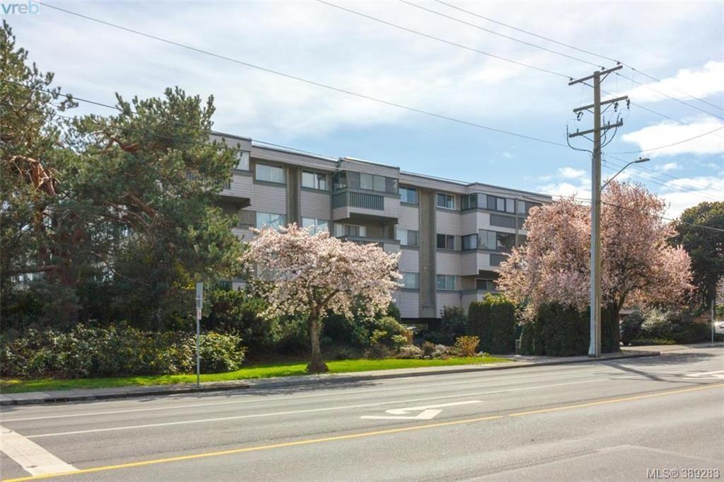 Main Photo: 306 1525 Hillside Ave in VICTORIA: Vi Oaklands Condo for sale (Victoria)  : MLS®# 782338