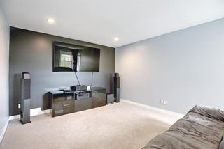 Photo 38: 133 WALDEN Square SE in Calgary: Walden Detached for sale : MLS®# A1101380