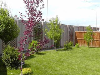 Photo 47: 155 CHAPALINA Mews SE in Calgary: Chaparral Detached for sale : MLS®# C4247438