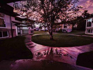 Photo 39: 4352 76 Street in Edmonton: Zone 29 Townhouse for sale : MLS®# E4240393