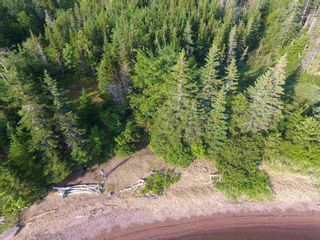 Photo 15: Gillis Point Road in Gillis Point: 209-Victoria County / Baddeck Vacant Land for sale (Cape Breton)  : MLS®# 202120644