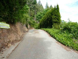 Photo 8: 47165 YALE Road in Chilliwack: Chilliwack E Young-Yale Land for sale : MLS®# R2459551