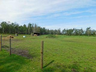 Photo 31: 17 Aspen Ridge Crescent: Rural Sturgeon County House for sale : MLS®# E4229491