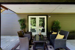 Photo 17: 26115 124 AVENUE in Maple Ridge: Websters Corners House for sale : MLS®# R2171616