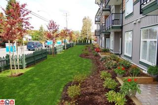 Photo 7: # 105 8183 121A ST in Surrey: Queen Mary Park Surrey Condo for sale : MLS®# F1021808