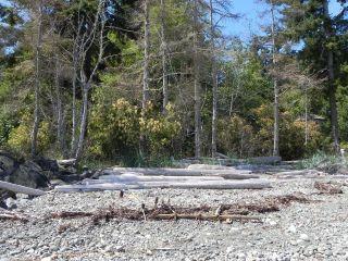 Photo 9: LT 2 Seaview Rd in COURTENAY: CV Merville Black Creek Land for sale (Comox Valley)  : MLS®# 765913