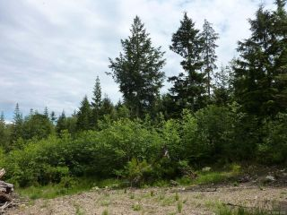 Photo 6: SL 14 950 Heriot Bay Rd in QUADRA ISLAND: Isl Quadra Island Land for sale (Islands)  : MLS®# 841835