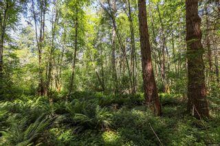Photo 16: 1752 Little River Rd in : CV Comox Peninsula Land for sale (Comox Valley)  : MLS®# 878788