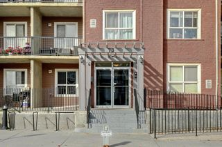 Photo 29: 4104 73 Erin Woods Court SE in Calgary: Erin Woods Apartment for sale : MLS®# A1042999