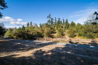 Photo 30: 1114 Craigflower Rd in : Es Kinsmen Park House for sale (Esquimalt)  : MLS®# 885588