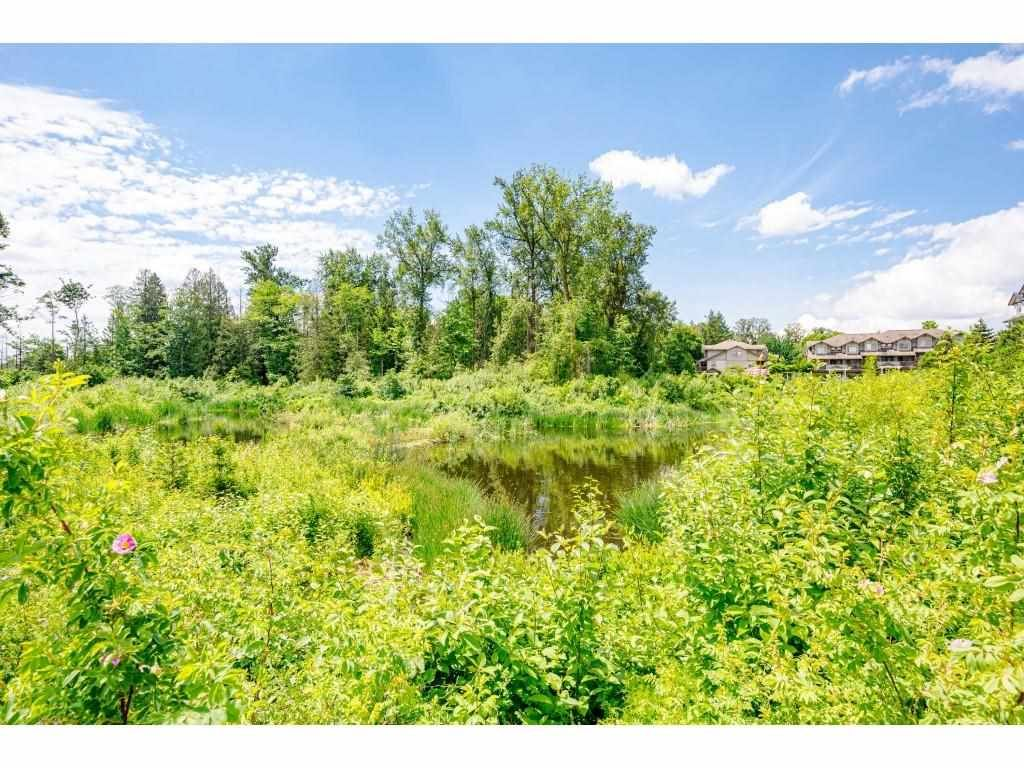 """Photo 28: Photos: 204 19366 65 Avenue in Surrey: Clayton Condo for sale in """"LIBERTY AT SOUTHLANDS"""" (Cloverdale)  : MLS®# R2591315"""